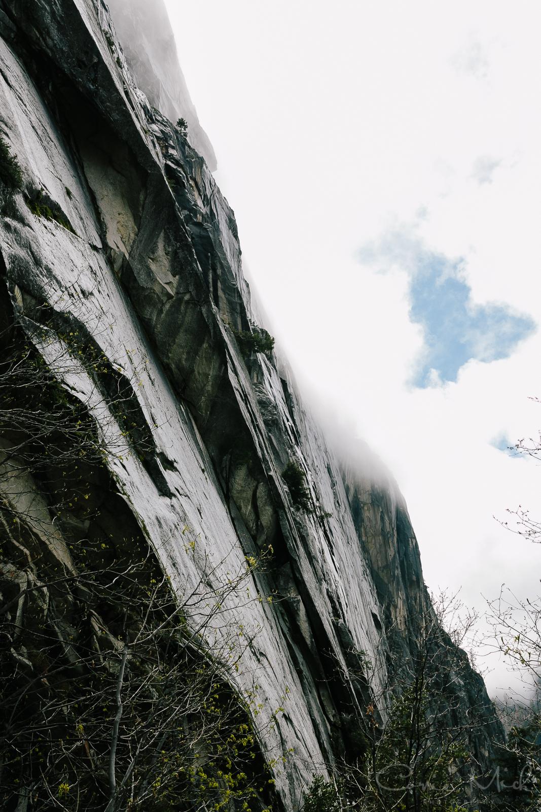 Yosemite April 2016 - Corrie Mick Photography-37.jpg