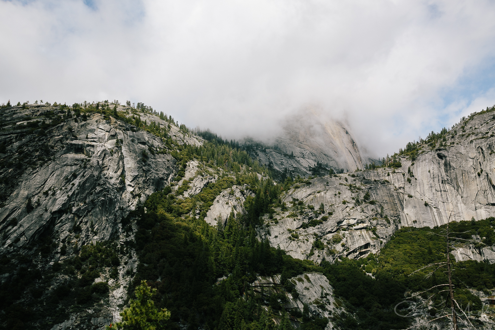 Yosemite April 2016 - Corrie Mick Photography-40.jpg