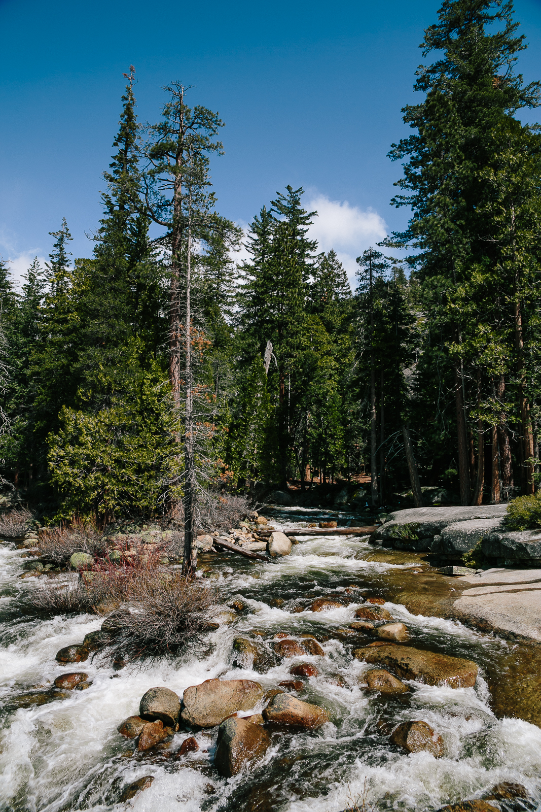 Yosemite April 2016 - Corrie Mick Photography-69.jpg