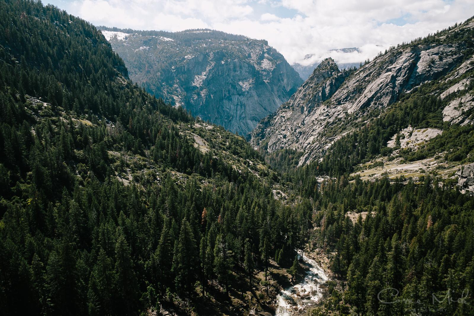 Yosemite April 2016 - Corrie Mick Photography-75.jpg