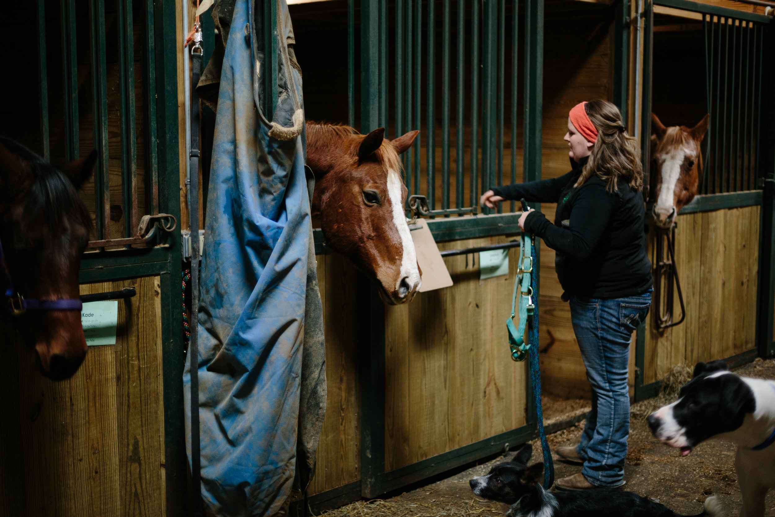 Jess & Shea at the Horse Barn in the Snow - Corrie Mick Photography-11.jpg