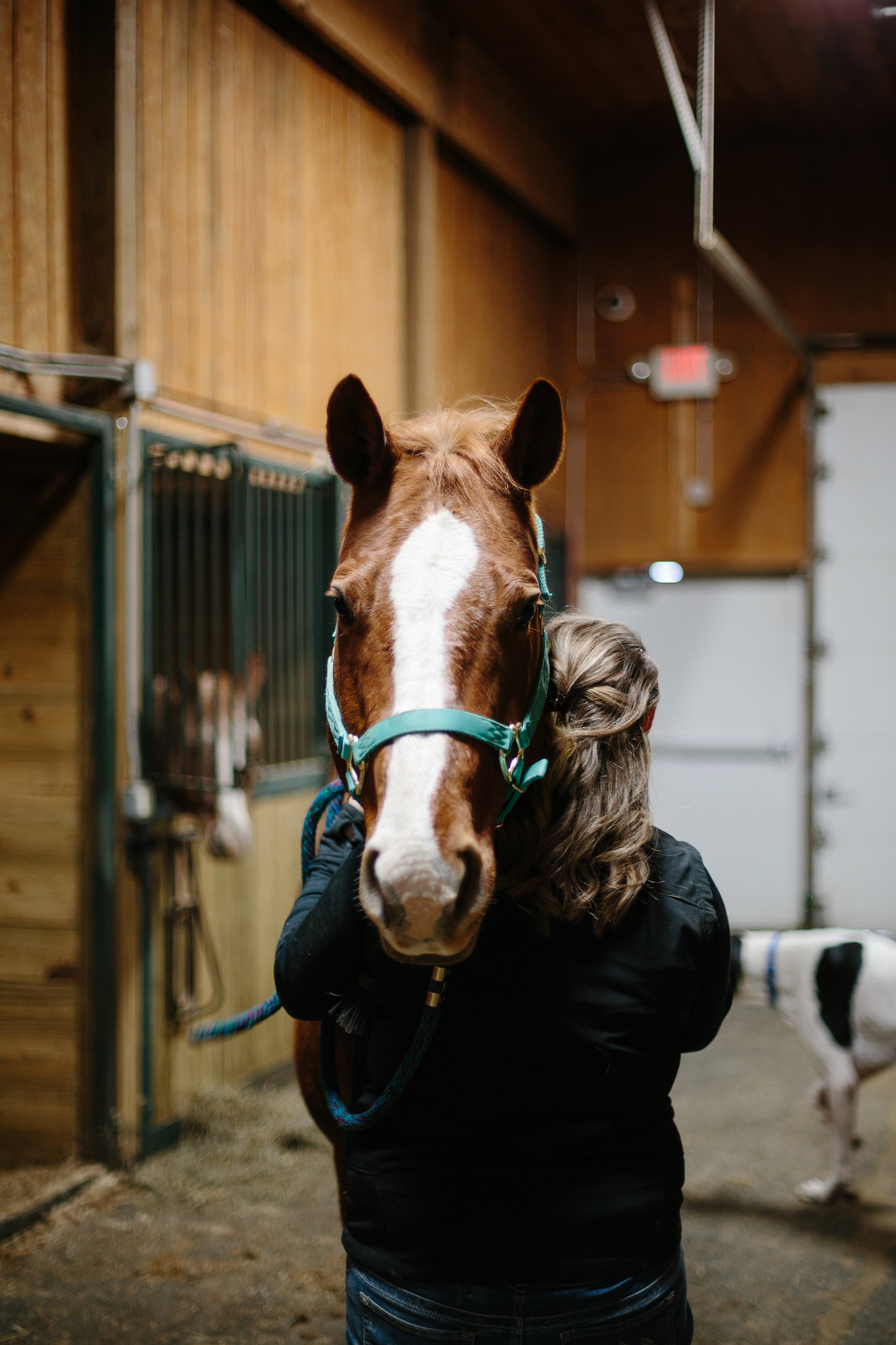 Jess & Shea at the Horse Barn in the Snow - Corrie Mick Photography-13.jpg