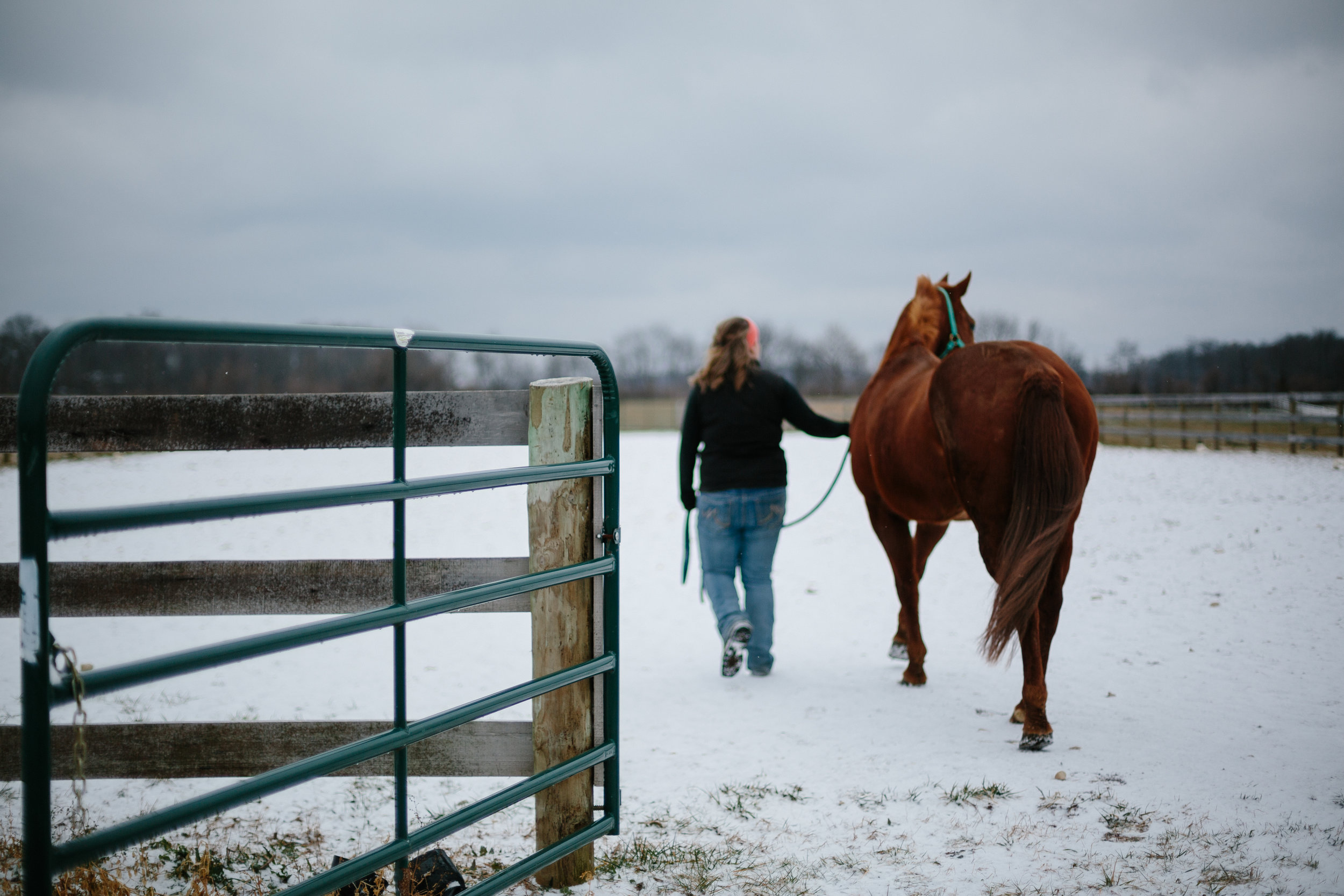 Jess & Shea at the Horse Barn in the Snow - Corrie Mick Photography-31.jpg