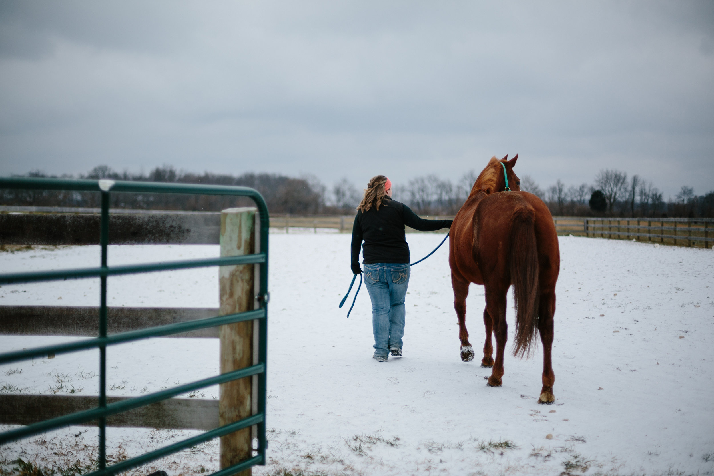 Jess & Shea at the Horse Barn in the Snow - Corrie Mick Photography-32.jpg
