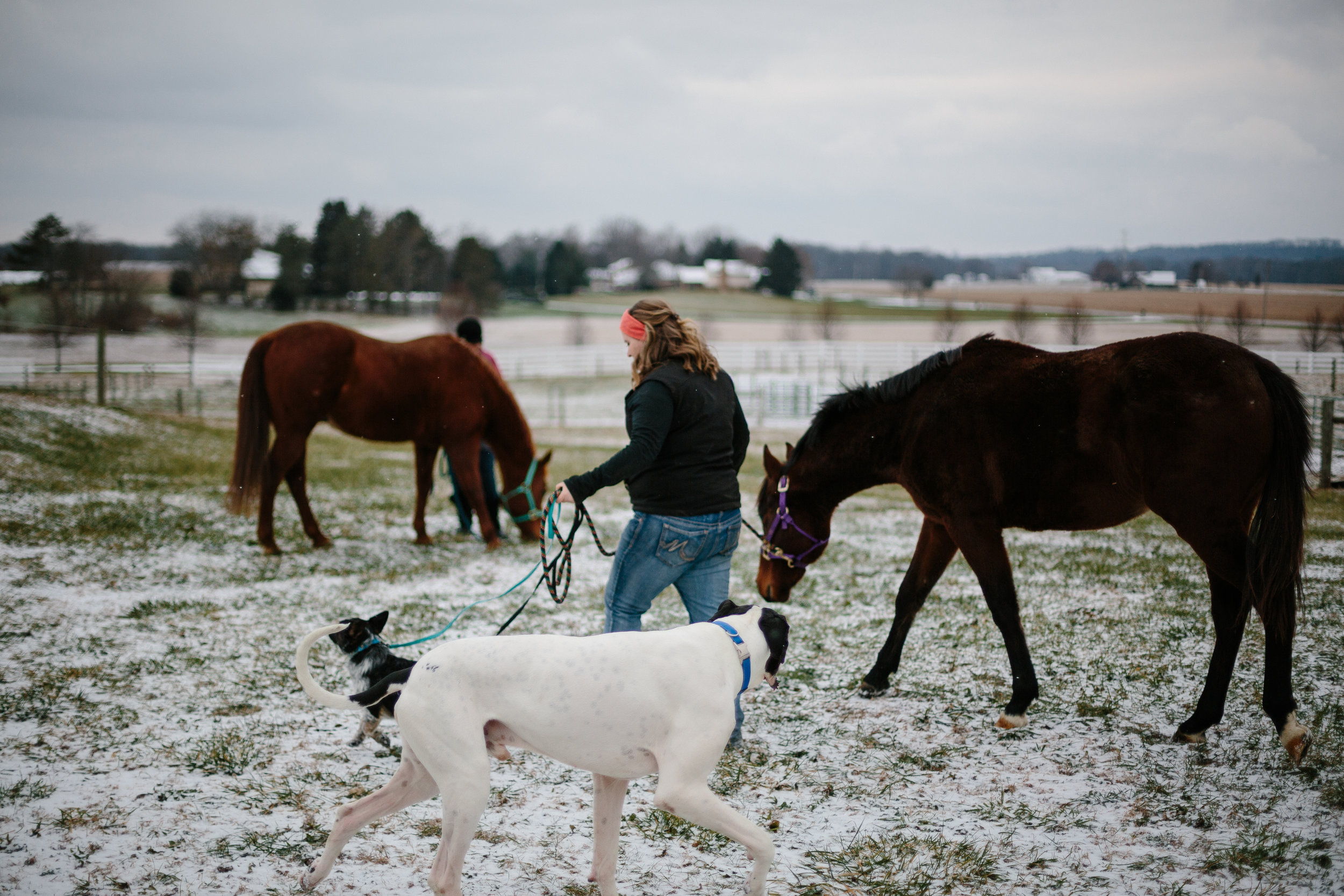 Jess & Shea at the Horse Barn in the Snow - Corrie Mick Photography-42.jpg