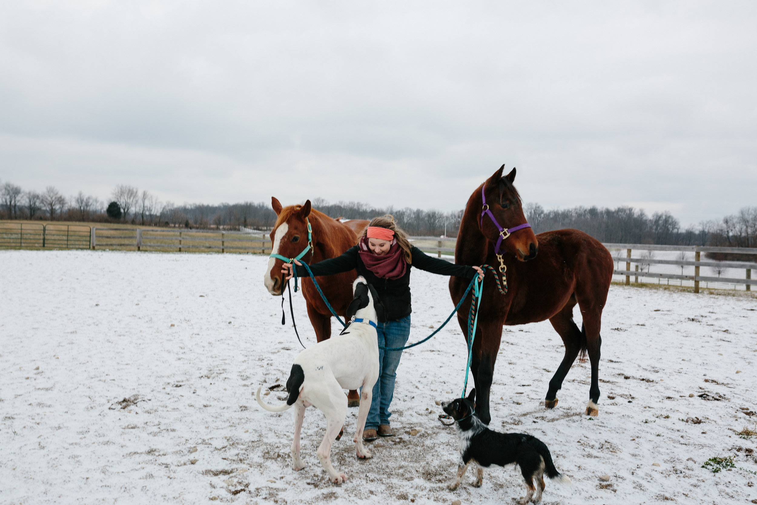 Jess & Shea at the Horse Barn in the Snow - Corrie Mick Photography-83.jpg