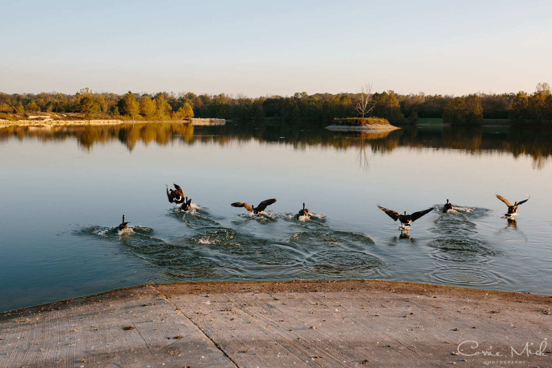 Lake Lyndsay Wedding - Portland, Oregon Photographer - Corrie Mick Photography-370.jpg
