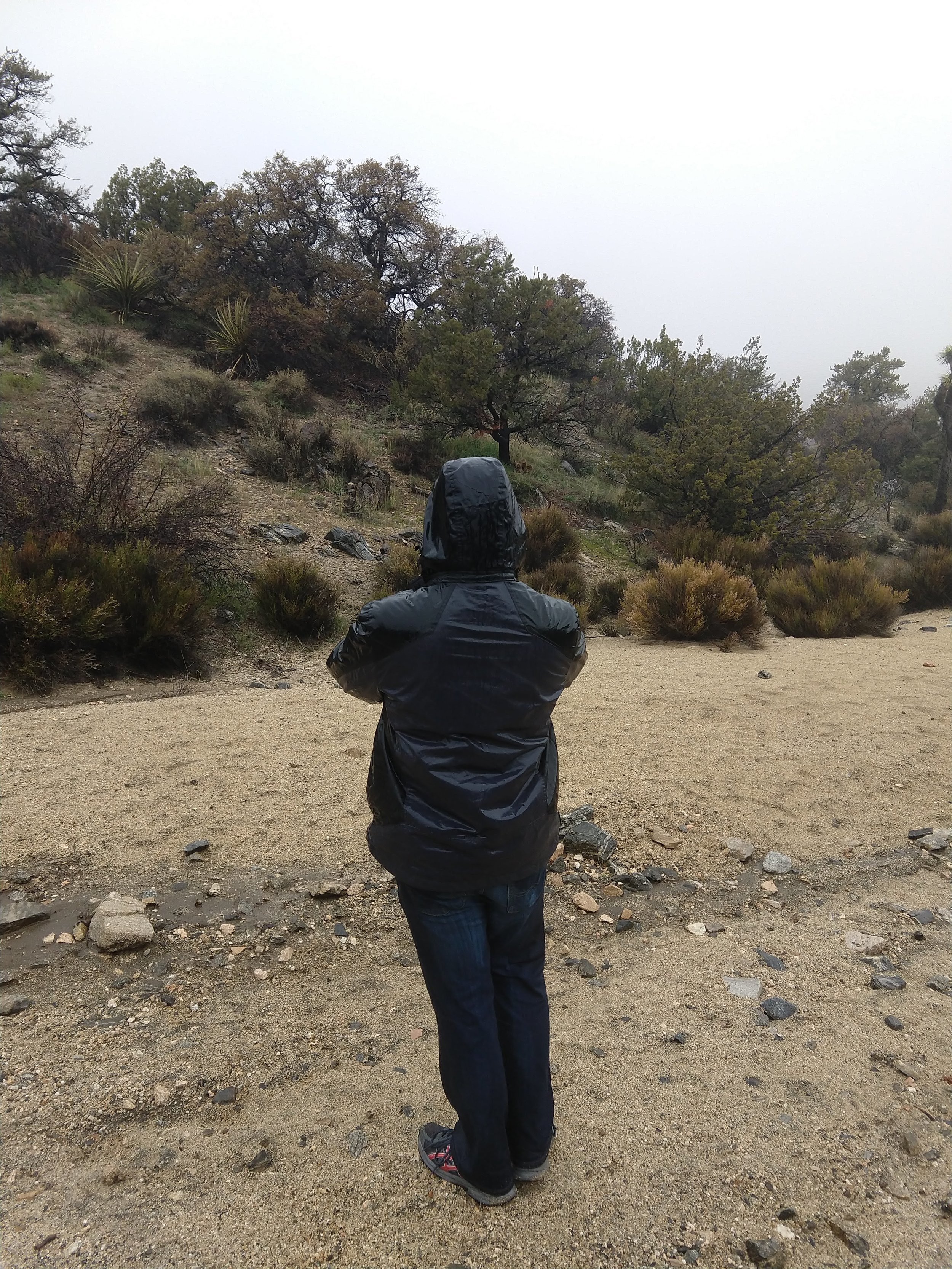 Hiking Joshua Tree in the Monsoon Rains and Getting Completely Soaked.jpg