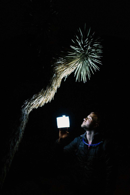 Joshua Tree National Park February 13 - Corrie Mick Photography-73.jpg