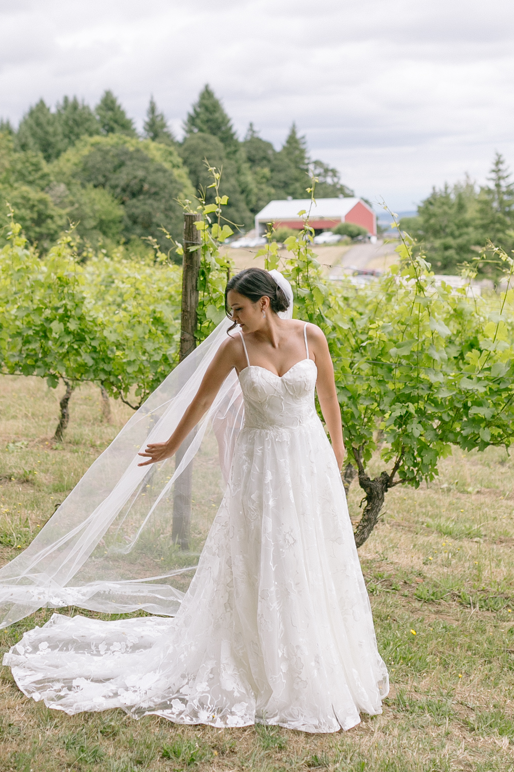 Youngberg Hill Vineyard Wedding in Wine Country Oregon - Corrie Mick Photography-35.jpg