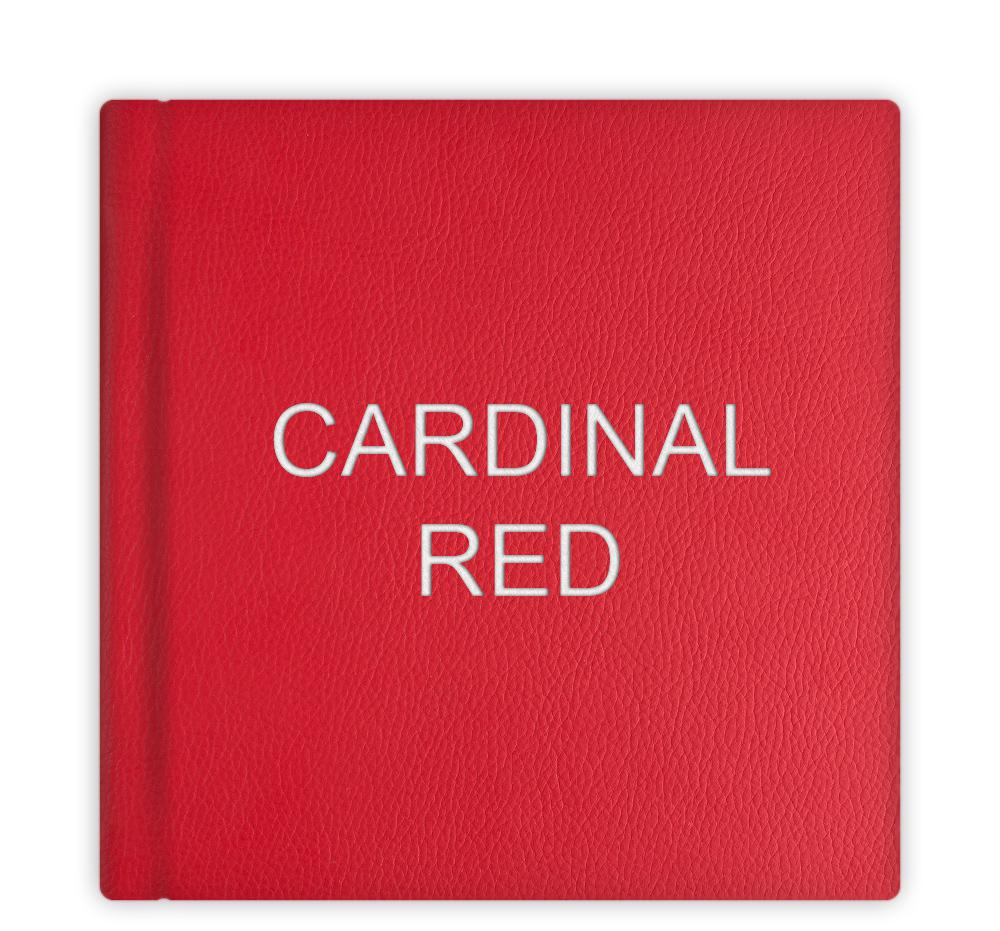 leatherette_21_cardinal-red.jpg