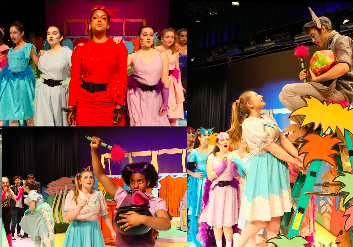 Congratulations to TVAI students, Teryn, Anna, Tess, & others at Tuscarora High School who shined in their Seussical the Musical production! Bravi!