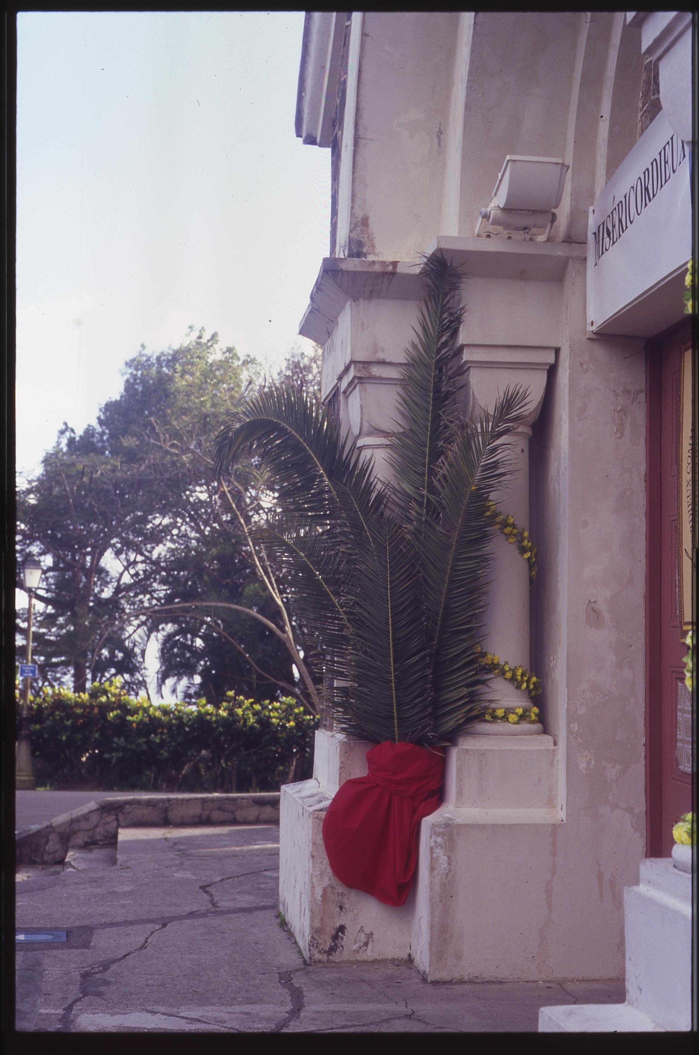 Martinique_film030.jpg