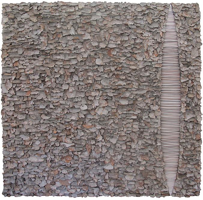 "Splinter    tree bark on canvas   48"" x 48"""