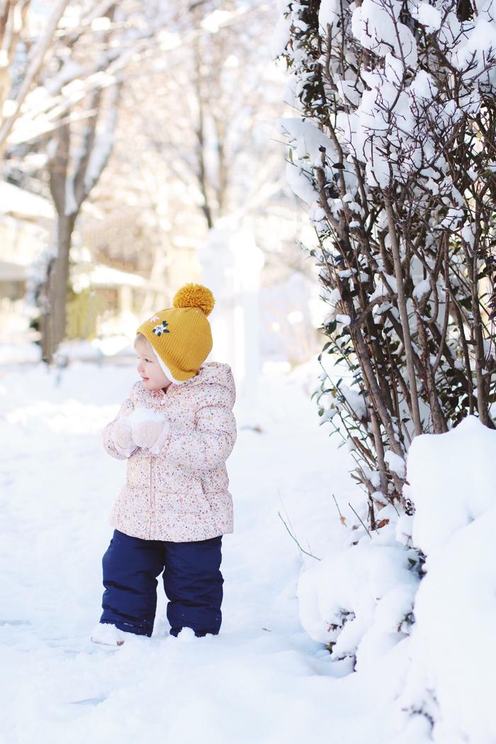 snowbird6.jpg