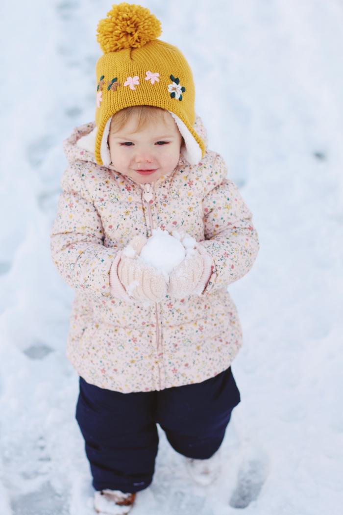snowbird7.jpg