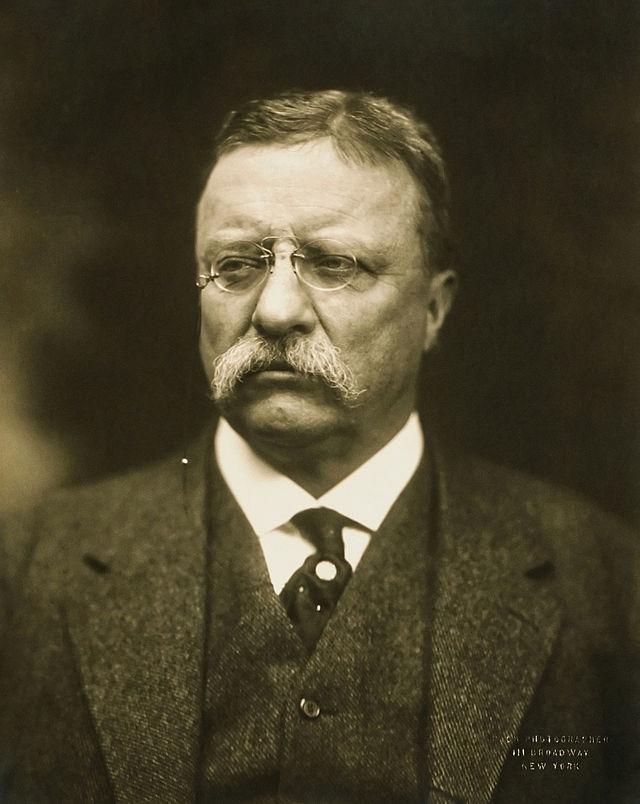 T_Roosevelt.jpg