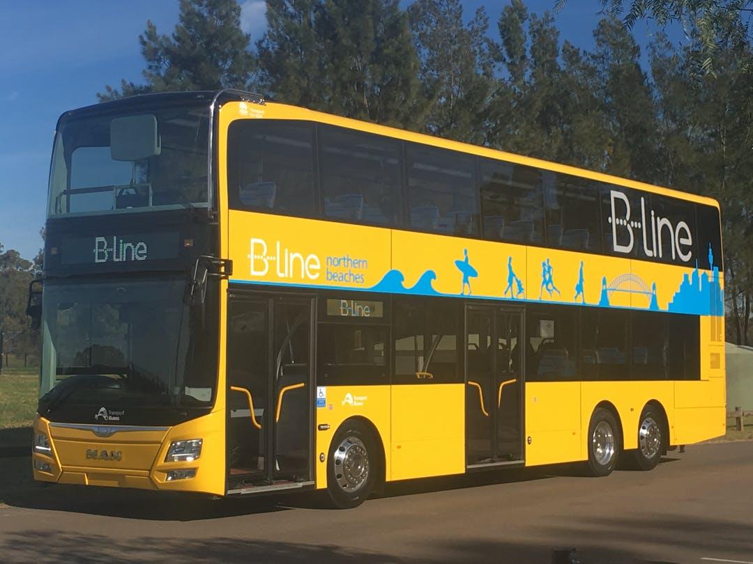 bline-bus.jpeg