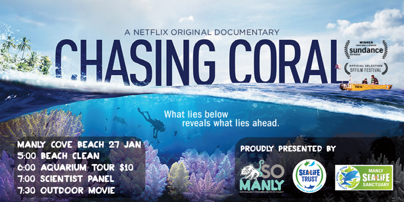 chasing-coral.png