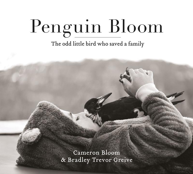 penguinbloom7.jpg