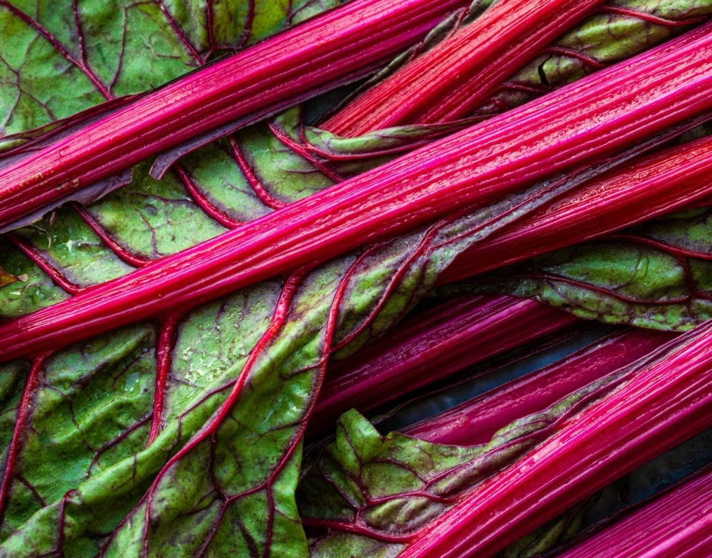 Rhubarb     - Stewed rhubarb is the perfect thing to curl up with a blanket and devour. It's a classic and super easy dish, with just a hint of sweetness that works a treat when mixed with Greek yoghurt.