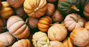 Pumpkin     - Would it be winter without a thick pumpkin soup and toasted bread to dip? Definitely not. You can do so much with this gloriously hearty veggie, like spicing up your soup with a variety of different flavours.
