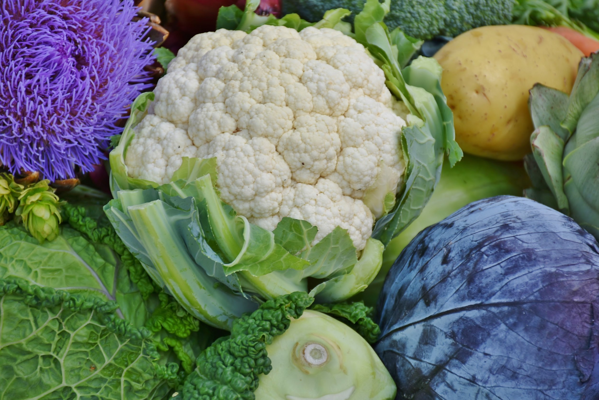 Cauliflower - is in, and it's everyone's new favourite veggie. Roast a head of cauliflower and enjoy it with tahini dip, or hummus, or cheese… as you graze on the array of combinations you'll feel like you're privy to a rare culinary delight. The secret? It couldn't be easier to prepare.