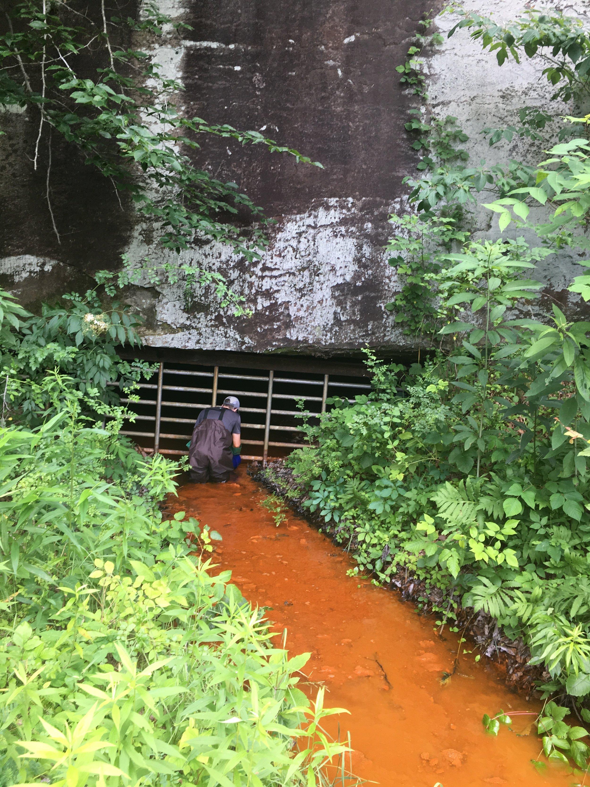 "Acid mine seep called ""Bat Gate"" in Sulfur Spring Hollow, Ohio"