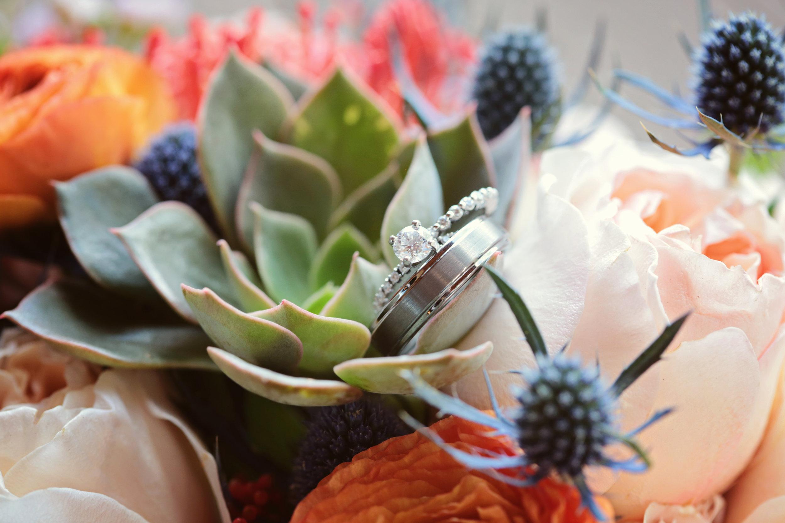 Tucson_FloralRings.jpg