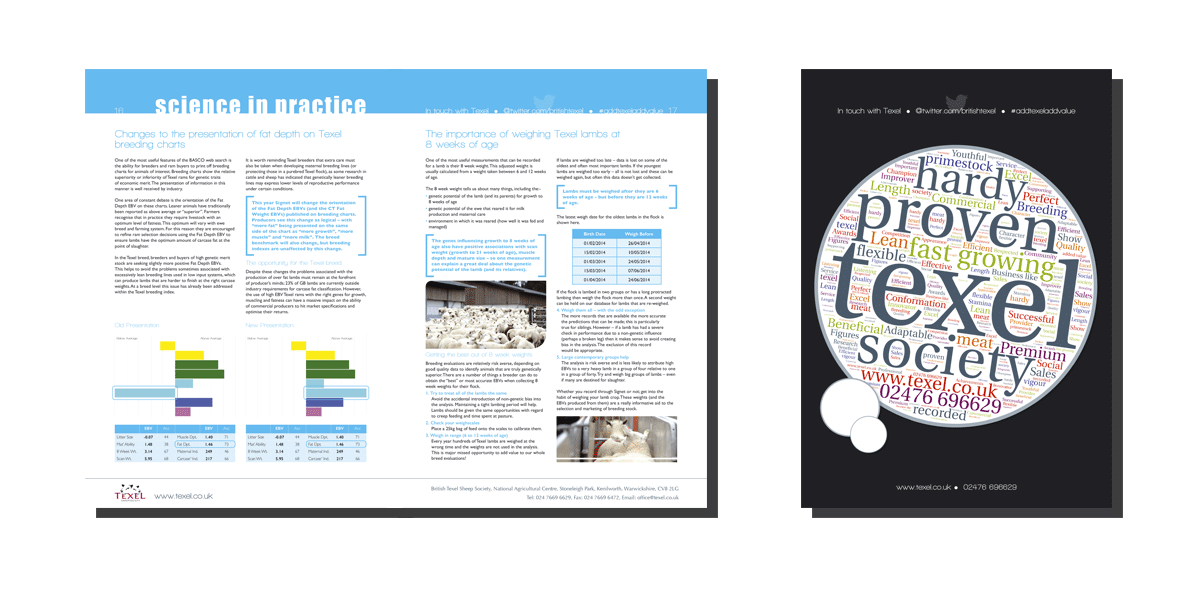 Texel_Design-For-Print_1.png