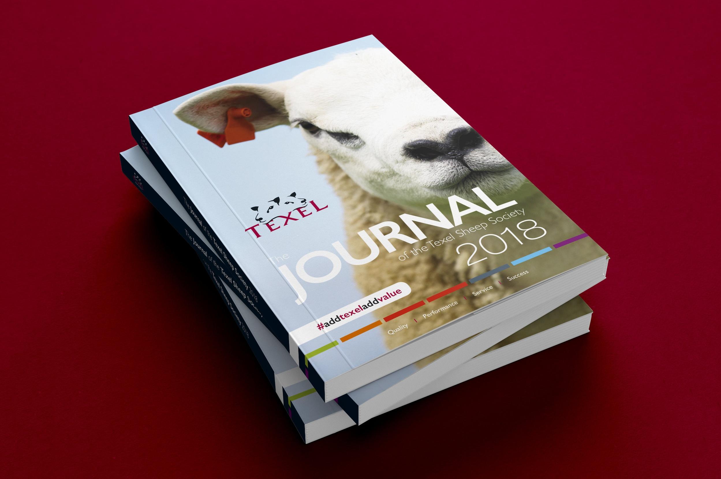 tex journal cover.jpg
