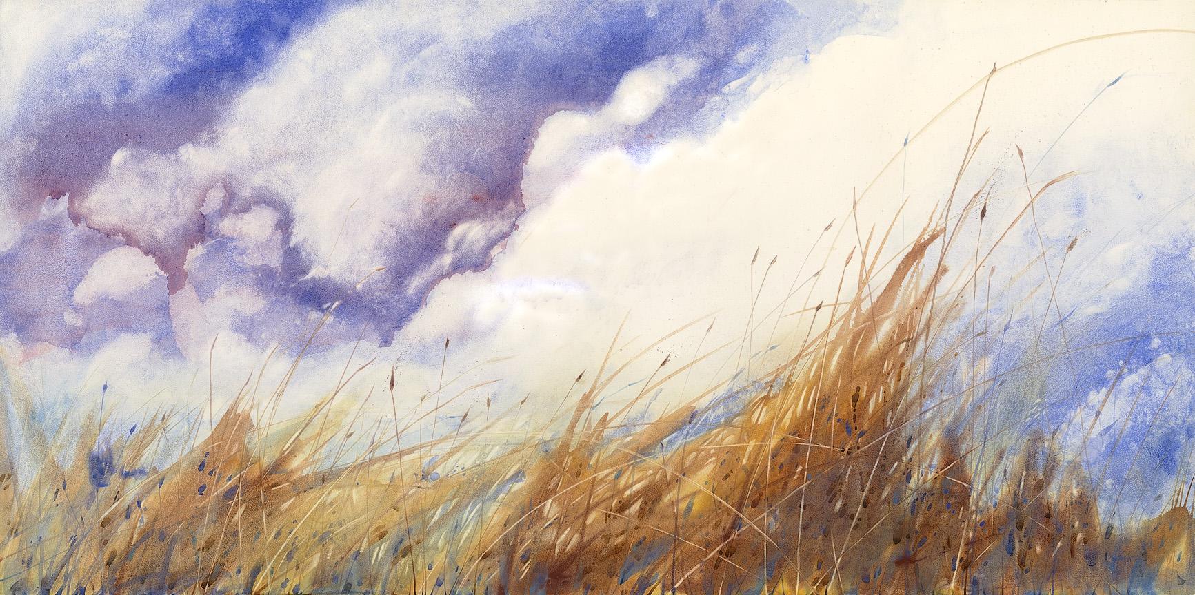 Big Sky Tallgrass