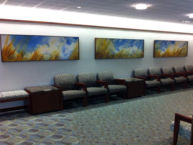Mayo Clinic   MN