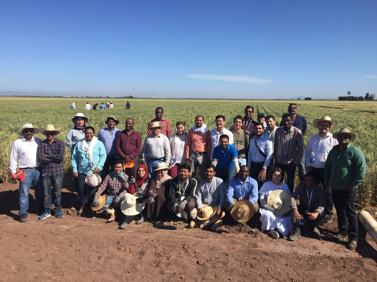 2019 CIMMYT BWIC Trainee Group in the field.