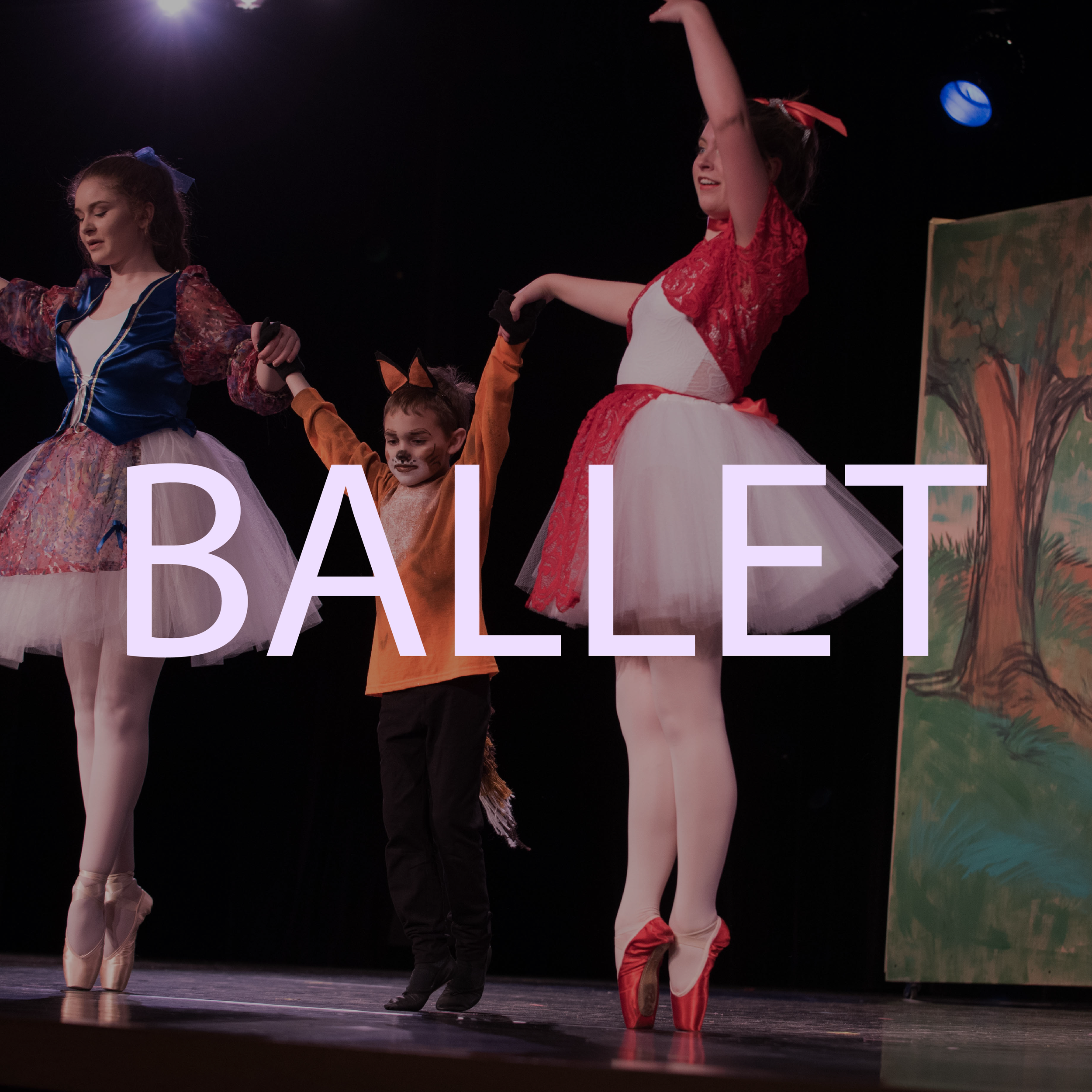 BALLET square for website-01.png