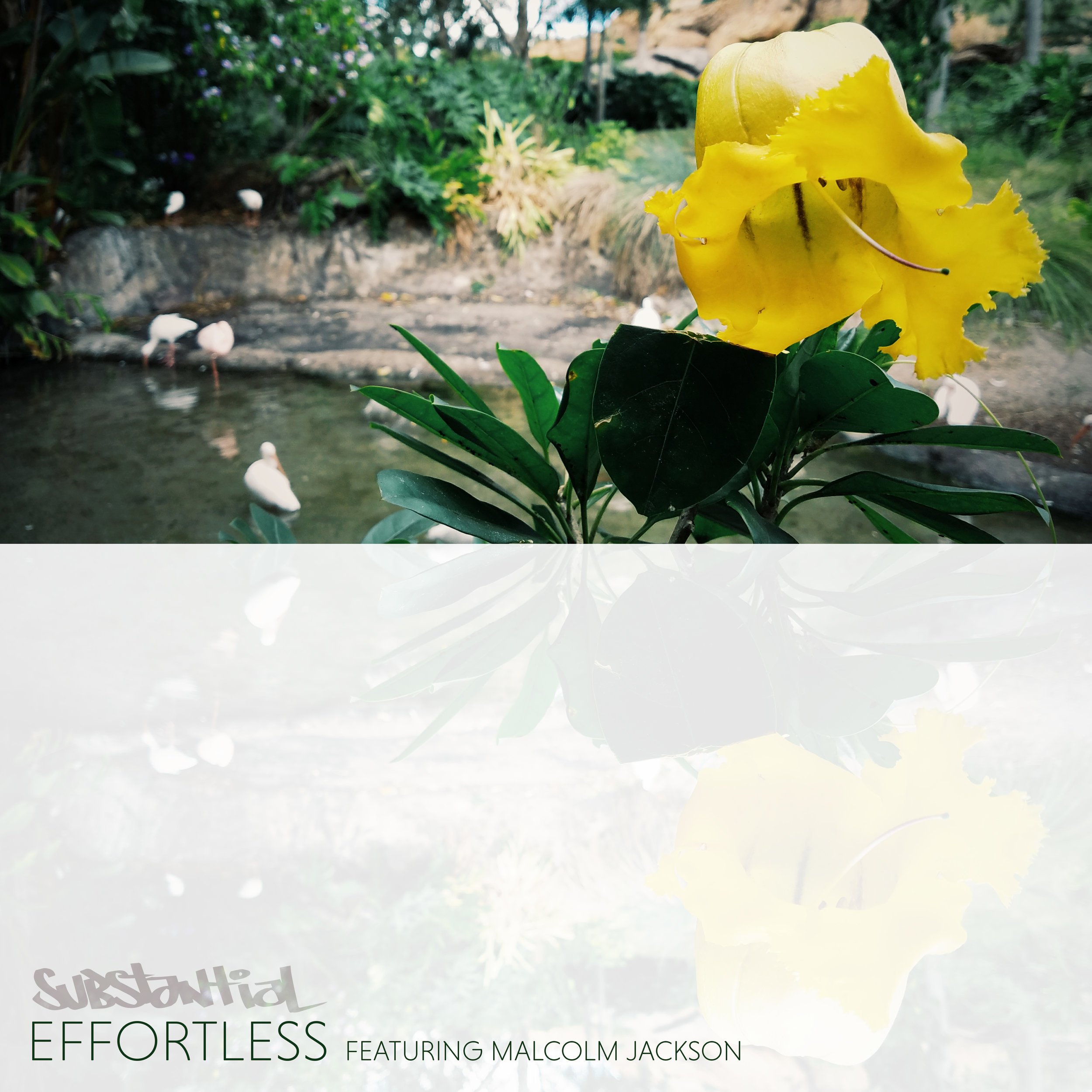 Effortless-Cover.jpg