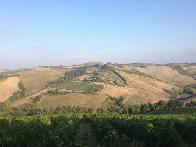 The hills of Faenza Italy