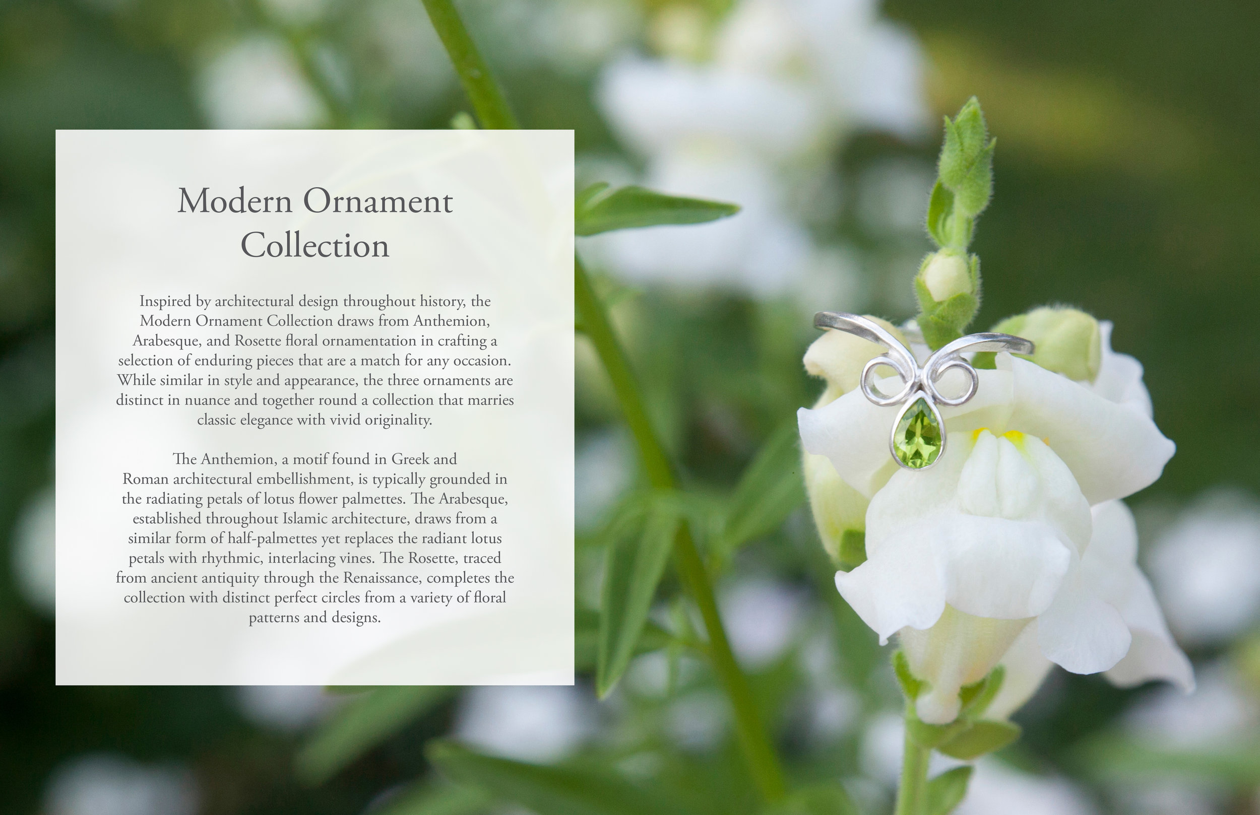 Modern Ornament Collection