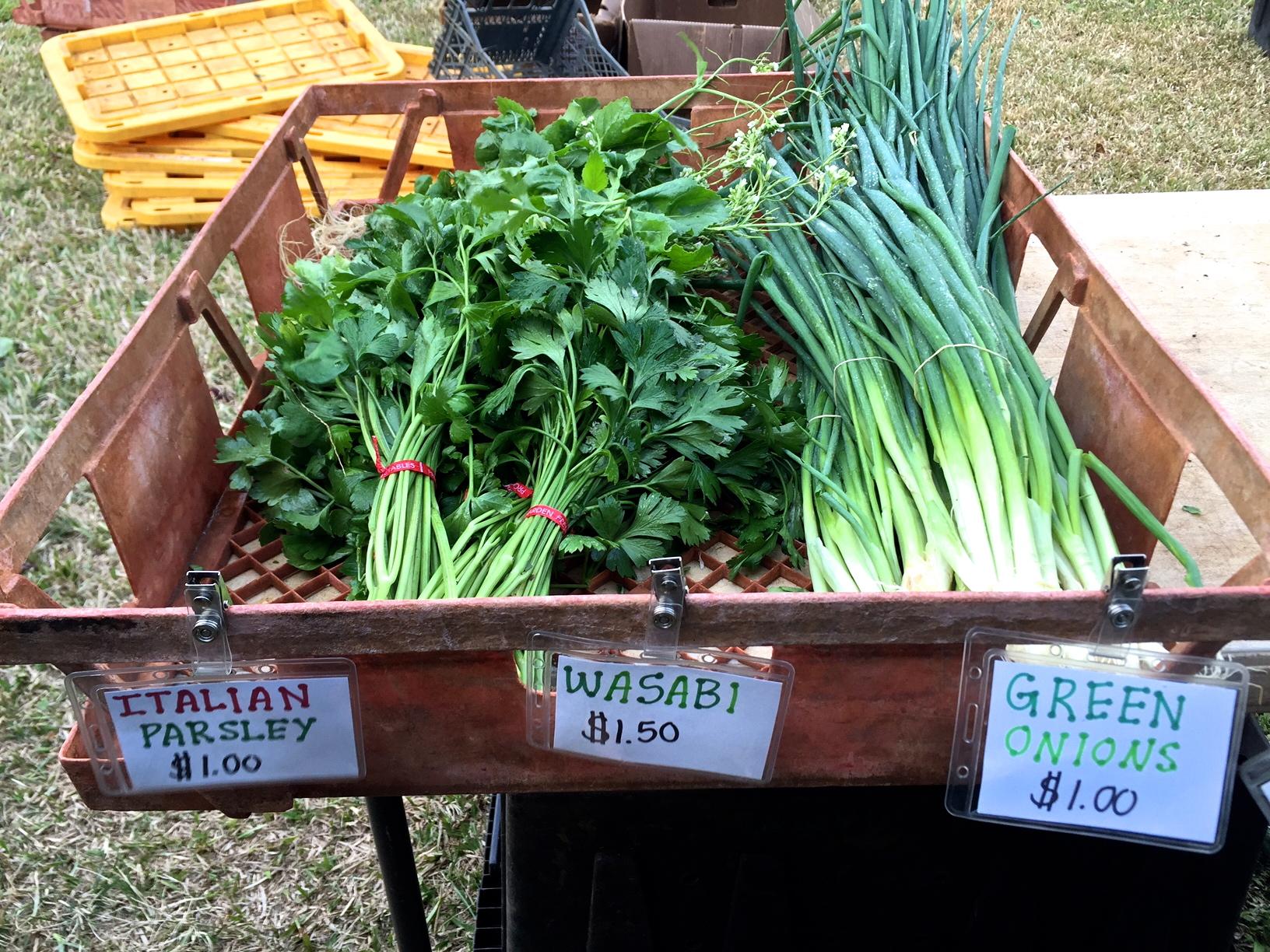 Honolulu farmers market
