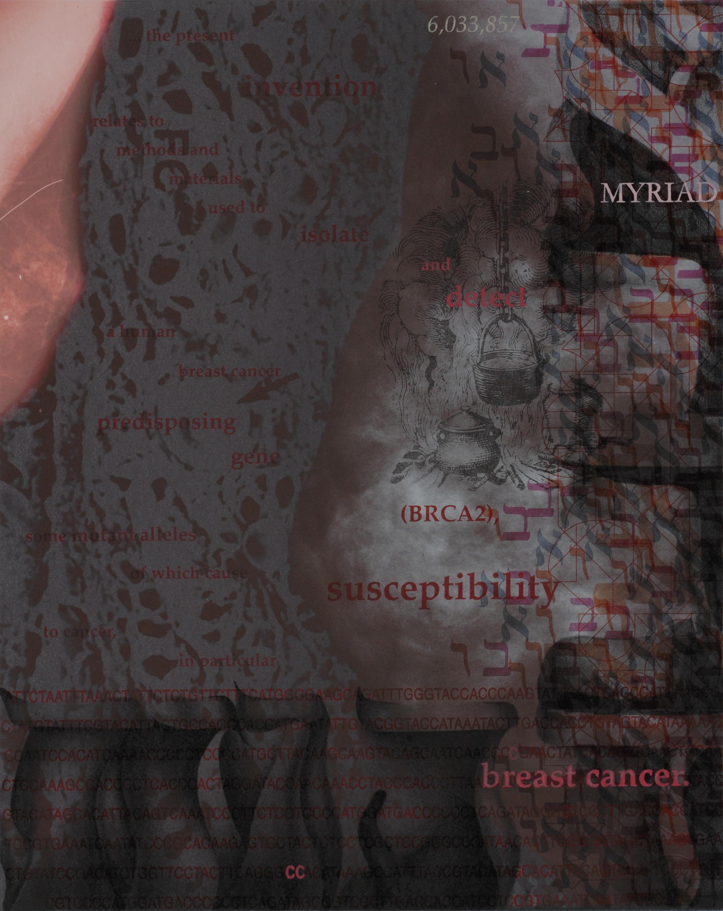BRCA2: Myriad Susceptibilities 2