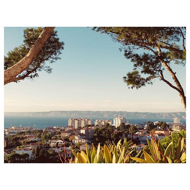 De la hauteur sur Marseille 🌁 . . . . . . #marseille #marseillecity #marseillerebelle #marseillegram #marseillecartepostale #marseillejetaime #marseillesometimes #choosemarseille #igersmarseille #igers #city #view #sea #instagood #instadaily #instatravel #vscoedit #vscodaily #vsco #cheznousamarseille