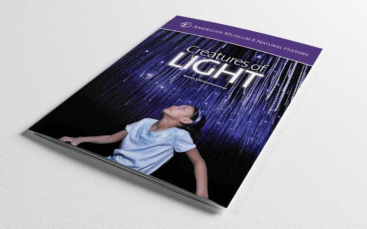 CreaturesOfLight_Lighter_1.jpg
