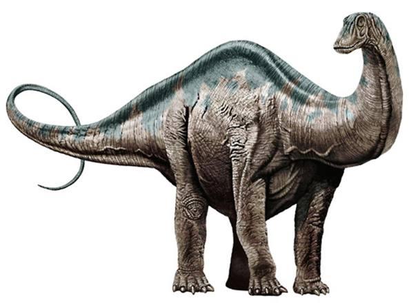 brontosauro.jpg