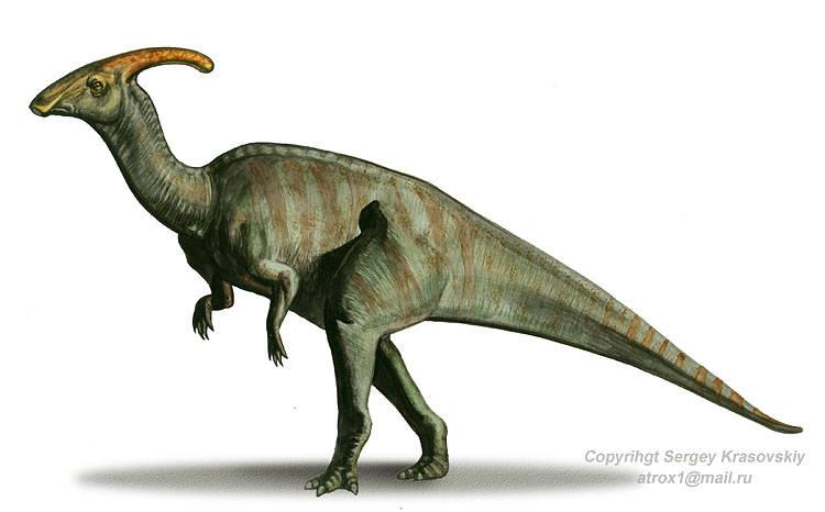 Parasaurolophus-1.jpg