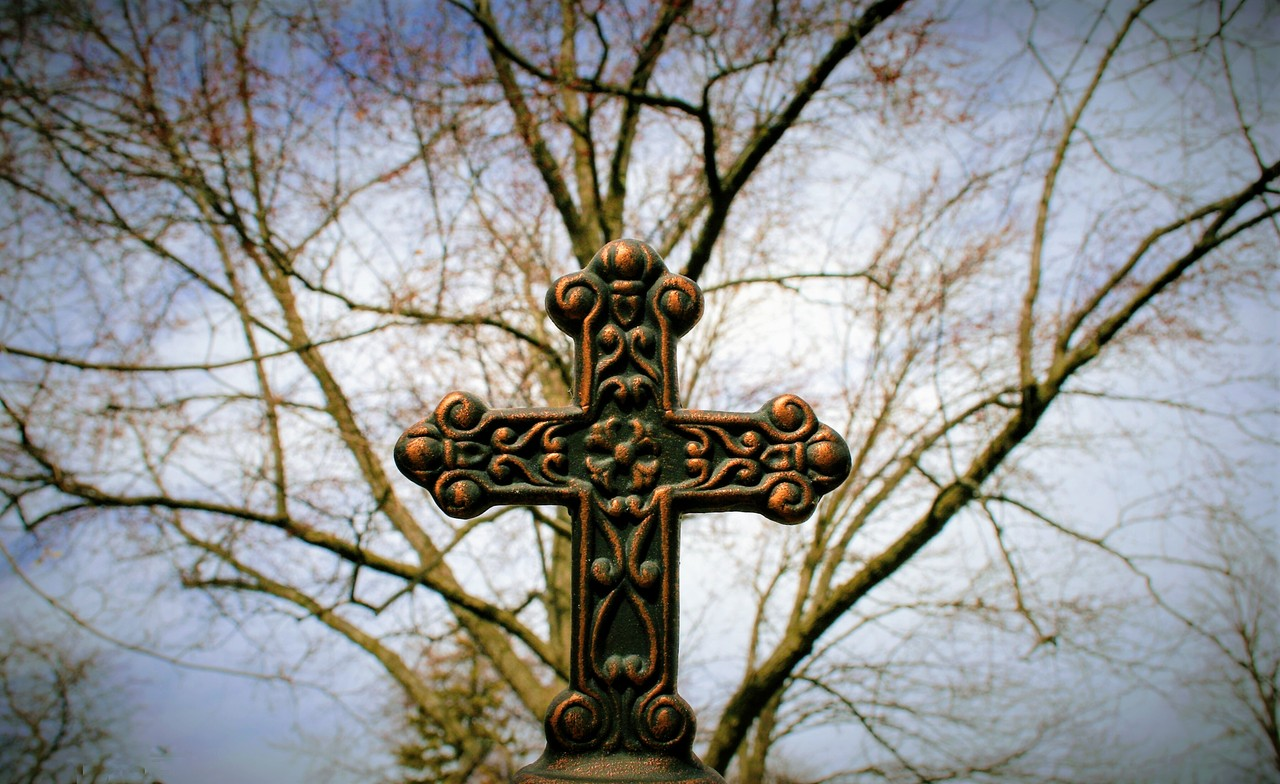 Cross_Tree_2.jpg