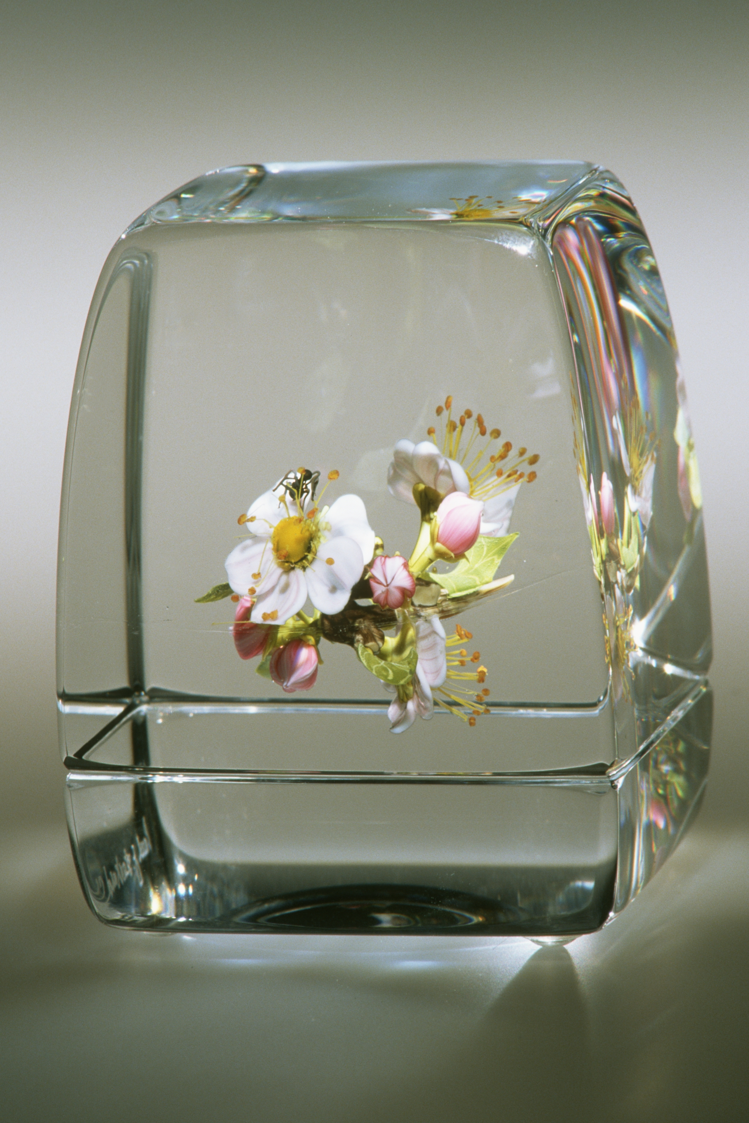2003; Apple Blossom Cube; H. 3.0 inches