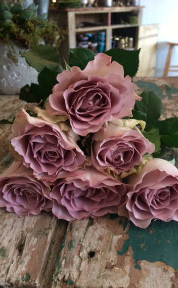 """This Easter week's $10 wrap bouquet consists of a half dozen gorgeous, ruffly lavender """"memory lane"""" roses. Give us a call at 218-728-1455 to reserve. Please mention the day you'd like to pick up (available Tuesday through Saturday) and the number of bouquets you'll be needing. See you soon!"""
