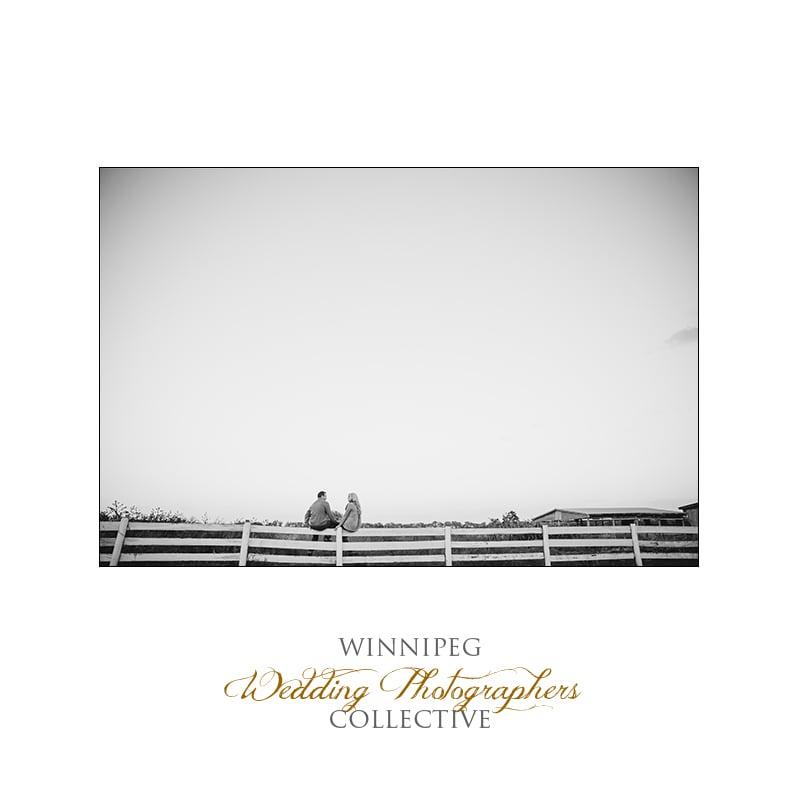 Prairie farm engagement photographer highlights