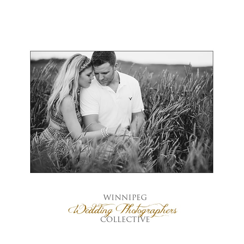 Morris farm engagement photographer highlights