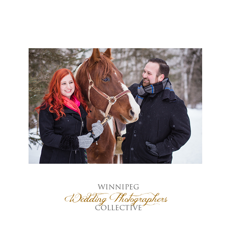 Winter Engagement with Horses002.jpg